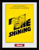 Pfc2830-the-shining-the-shining