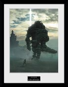 Pfc2993-shadow-of-the-colossus-key-art