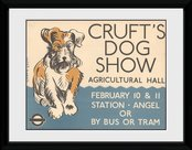 Pfc2885-transport-for-london-crufts