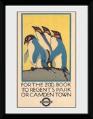 Pfc2863-transport-for-london-zoo