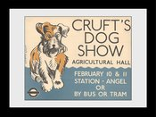 Pfi051-transport-for-london-crufts