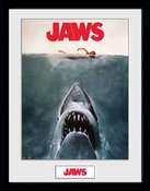 Pfc3358-jaws-key-art