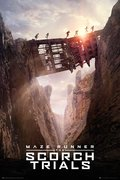 Maze Runner 2 - Bridge