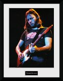 Pfc3487-david-gilmour-live-photo