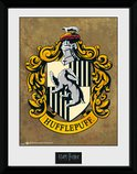 Pfc2227-harry-potter-hufflepuff