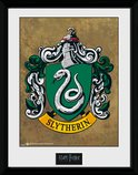 PFC2226-HARRY-POTTER-slytherin.jpg