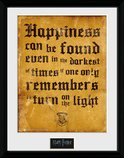 Pfc2219-harry-potter-happiness-can-be