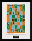 PFC2232-HARRY-POTTER-quiditch-world-cup.jpg