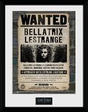 PFC2235-HARRY-POTTER-bellatrix.jpg