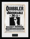 Pfc2230-harry-potter-quibler