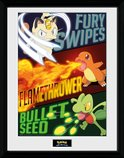 PFC2259-POKEMON-moves.jpg