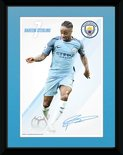 Pfa696-man-city-sterling-16-17