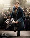 Mp2033-fantastic-beasts-newt-scamader
