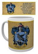Mg1948-harry-potter-ravenclaw-characteristics-mock-up