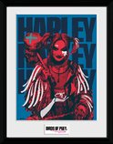 Pfc3543-birds-of-prey-harley-red