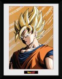Pfc2374-dragon-ball-z-goku