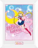 Pfc2361-sailor-moon-sailor-moon
