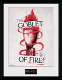 Pfc2514-harry-potter-triwizard-goblet-of-fire