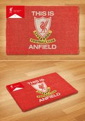 Dm0001-liverpool-this-is-anfield-mock-up