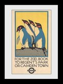 Pfi036-transport-for-london-zoo