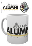 Mg3125-harry-potter-alumni-hufflepuff-mockup