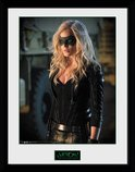 Pfc3066-arrow-black-canary