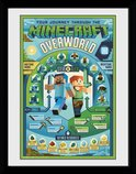 Pfc2960-minecraft-overworld-biome