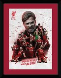 Pfc3103-liverpool-collage-17-18