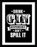 Pfc3147-let-there-be-gin-drink-responsibly