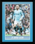 Pfa782-man-city-silva-18-19