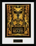 Pfc3229-fantastic-beasts-2-book-cover