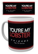 Mg3146-friends-you're-my-lobster-mockup
