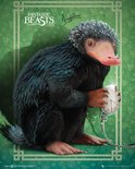 Mp2173-fantastic-beasts-niffler