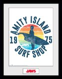 Pfc3357-jaws-amity-island-surf-shop