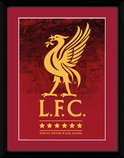 Pfc3473-liverpool-crest-and-stars-18-19