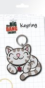 KR0017-BIG-BANG-THEORY-kitty-mock-up-1