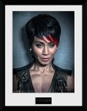 PFC1619-GOTHAM-fish-mooney