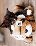 MP1707-KITTEN-toy-tiger