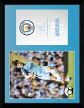 PFC2292-MAN-CITY-silva-16-17.jpg